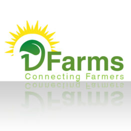 19 Farms Logo